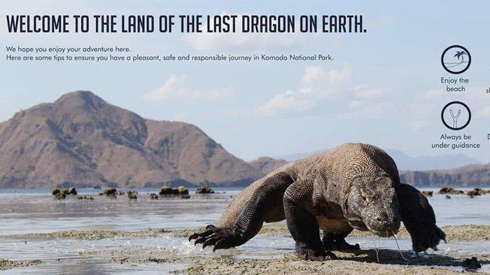 Pulau Komodo Masuk Destinasi yang Sebaiknya Tidak Dikunjungi 2020, Menurut Fodor's Travel, Ada Apa?