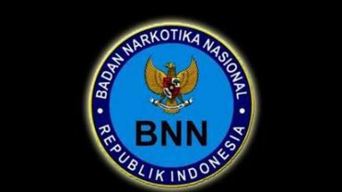 Dibuka Sampai 5 September 2021, Lowongan Kerja di BNN untuk Lulusan SMK, D3 dan S1, Buruan Daftar!