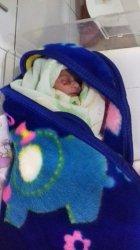 BREAKING NEWS: Warga Lasiana Kupang Geger Temukan Bayi Perempuan Dalam Lubang