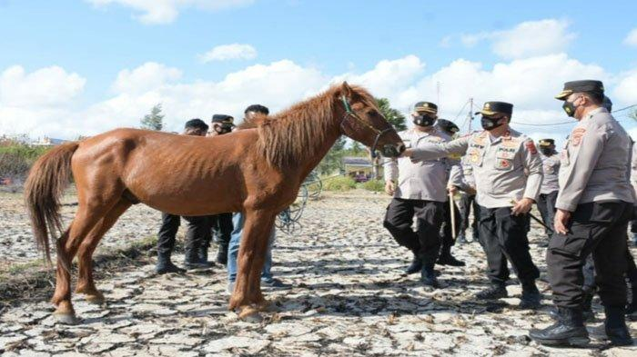 Buat Terobosan Baru, Pelayanan Polda NTT Bakal Menggunakan Pasukan Berkuda