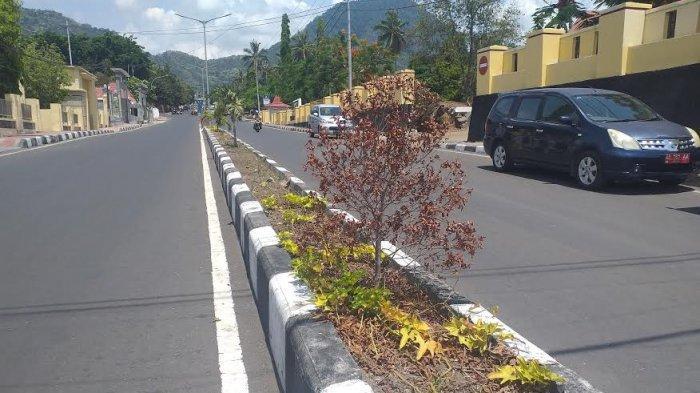 Bunga Di Jalan El Tari Dan Kelimutu, Ende Terancam Mati