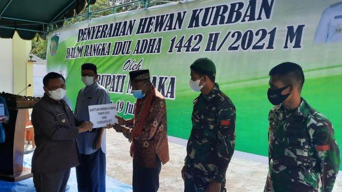 Umat Islam di Malaka Dapat Bantuan Hewan Kurban, Sholat Id Berjamaah Dibatalkan