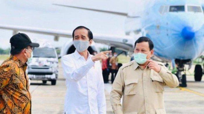 Prabowo Subianto Disebut Konsumsi Ivermectin, Politisi Gerindra Bantah, Begini Kata Dokter Budhi