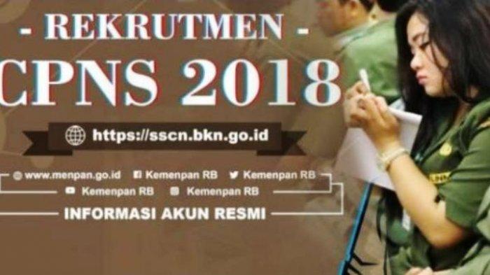 Pendaftaran CPNS Resmi Dibuka Rabu di sscn.bkn.go.id, Ikuti 4 Tips Pilihan Formasi