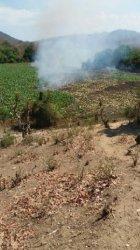 Di Sambi Rampas-Manggarai Timur! Padang di Danau Rana Tonjong Terbakar