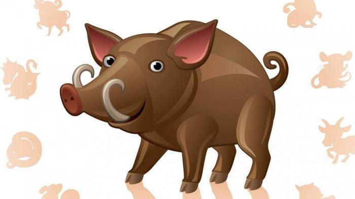 Babi termasuk salah satu dari 5 shio yang diramalakan akan mengalami peruntungan pada Jumat 9 April 2021