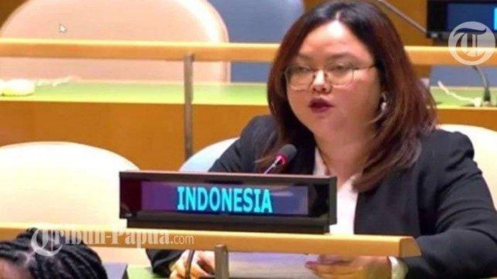 Pergolakan KKB Papua Jadi Sorotan Bob Loughman di Sidang Umum PBB, Begini Respon Diplomat Indonesia