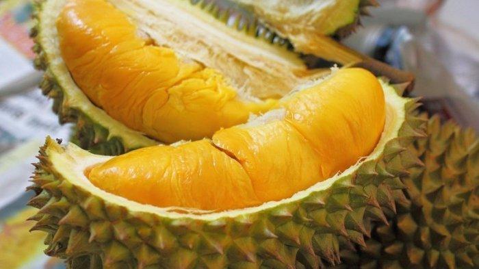 Disarankan Jangan Makan Durian Bila Anda Dalam 6 Kondisi Berikut, Apa Saja