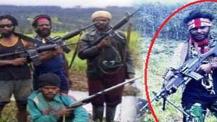 Berkoar Lawan TNI-Polri, Bos KKB Papua Egianus Kogoya Nyatanya Penakut,Sembunyi Dibelang Anak Buah