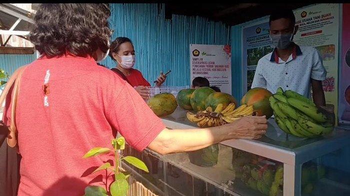 Expo Mahasiswa Politani Kupang Tampilkan Ragam Produk Tanaman, Apa Saja?