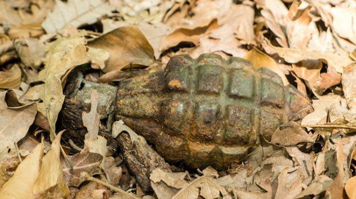 Granat Era Perang Dunia I Ditemukan di Antara Kiriman Kentang, Ini Bentuknya