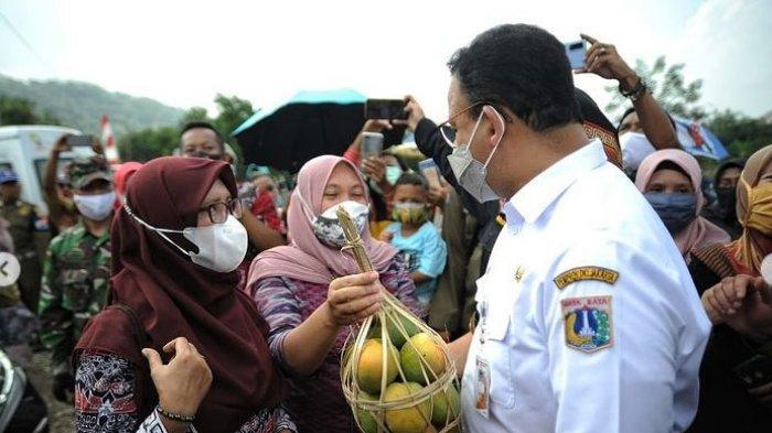 Anies Baswedan Panen Raya Bersama Bupati Sumedang, Disebut Tak Cocok Jadi Gubernur DKI Jakarta