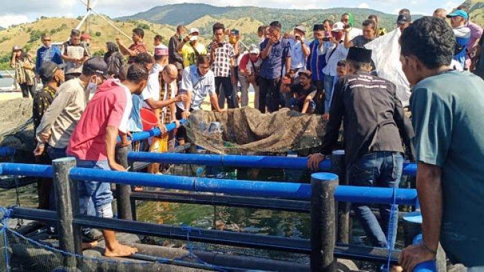 Gubernur NTT Tinjau Keramba Ikan Kerapu di Labuan Kelambu Riung