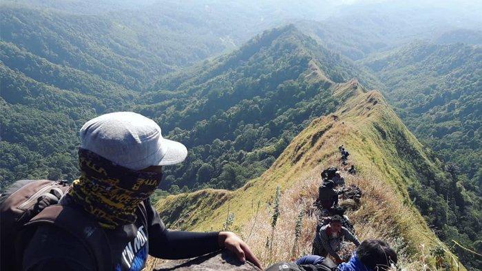Menikmati Eksotisme Gunung Piramid Bondowoso Jawa Timur Tempat Pendaki Thoriq Rizki Maulidan Hilang