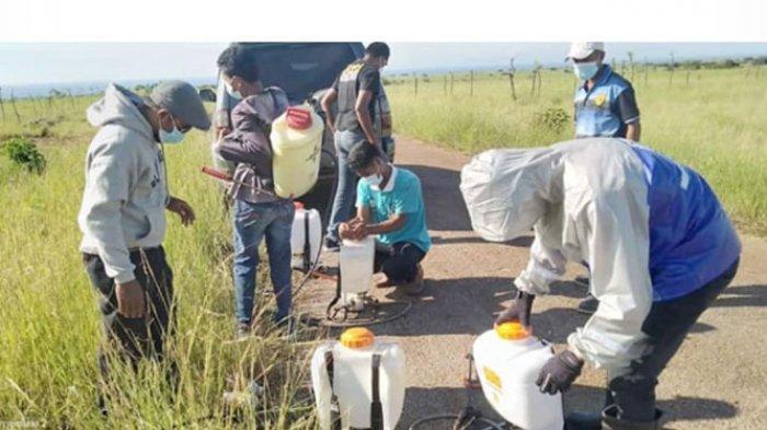 Warga sedang mempersiapkan obat untuk menyemprot hama belalang di wilayah Tanambanas, SumbaTengah.