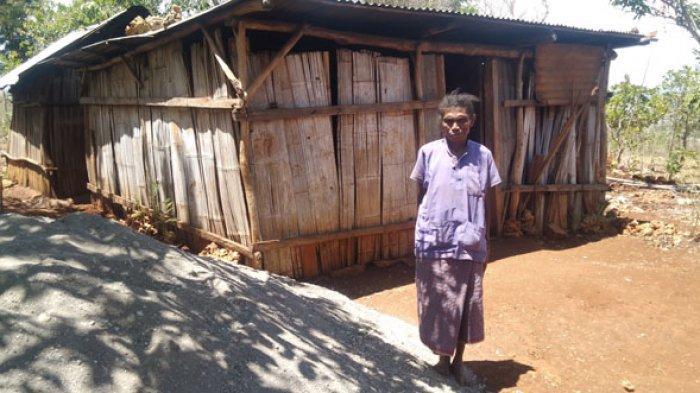 Hanura TTS Bangun Rumah Ruth Tafui