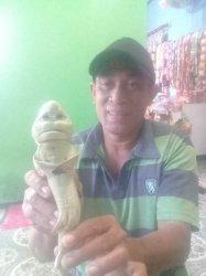 Ikan Hiu Mirip Manusia yang Ditemukan Nelayan Rote Ndao Kini Diawetkan