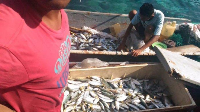 Ini Kronologi Penangkapan Nelayan Pembom Ikan di Adonara, Flores Timur