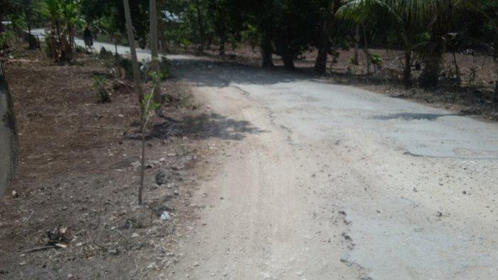 Jalan Menuju Obyek Wisata Ratenggaro, Sumba Barat Daya Rusak