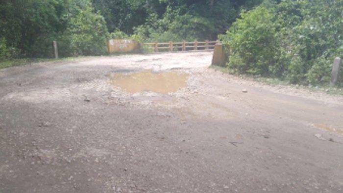 Jalan Provinsi di TTS Rusak, Ini Tanggapan Camat Mollo Tengah Yos Banamtuan
