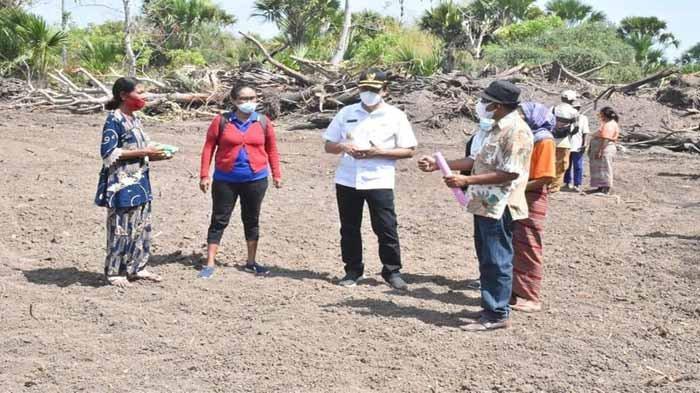 Jelang Kunjungan Menteri Pertanian, Pemkab Belu Genjot Lahan Food Estate