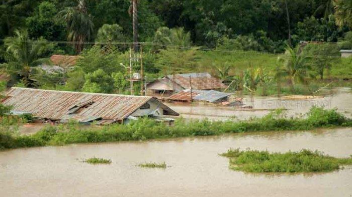 Dampak Siklon Tropis Seroja: Bendungan Rusak, Ribuan Hektar Sawah Sumba Timur Terancam Gagal Panen