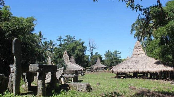 Pemda Sumba Timur Perbaiki Rumah Adat Lailara, Katala Hamu Lingu