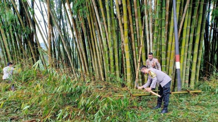 Kapolres Ngada Pimpin Anggota Bersihkan Pohon yang Tumbang Akibat Diterpa Angin Kencang