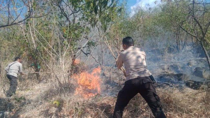 Anggota Polres Sikka dan UPT Kehutanan Padamkan Api di Hoder