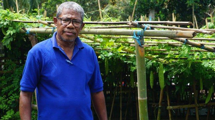 Intip Kreativitas Warga Kampung Kuwujawa Ende di Tengah Pandemi Covid