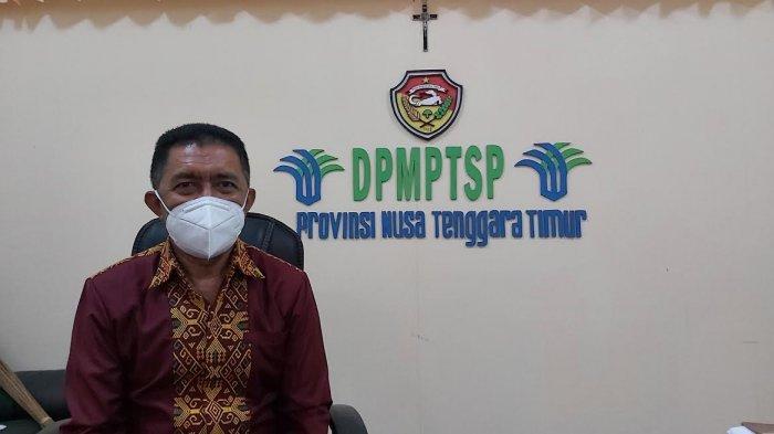 Kepala DPMPTSP NTT Sebut tidak Keluarkan Izin untuk Investasi Bodong
