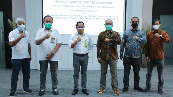 Kembangkan Hutan Energi untuk Co-firing PLTU, Undana dan PLN IUW NTT Teken MoU
