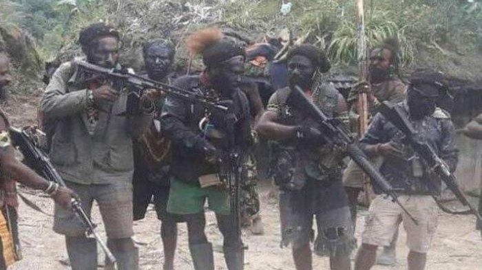 KKB Papua Semakin Biadab, Tak Mampu Lumpuhkan Prajurit TNI, Gerombolan Pengacau Lantas Tembak Guru
