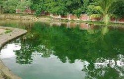 TRIBUN WIKI: Menikmati Mandi Air Panas Mengeruda di Ngada pada Pagi Hari