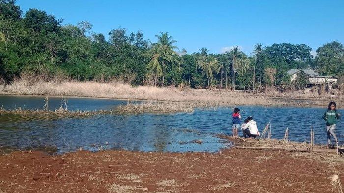 Begini Kondisi Terkini Danau Tankolo Kelurahan Sikumana Kota Kupang