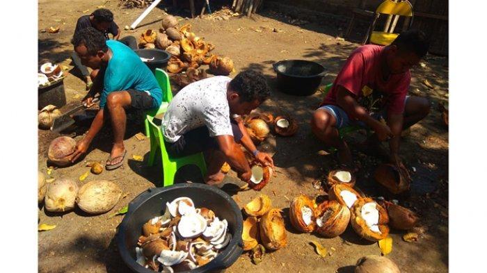 Minyak Goreng Pintar Kembalikan Tradisi dan Martabat Para Petani Flores