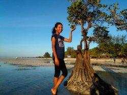 Siang Ini Tujuh Lokasi Wisata Favorit Terkenal di Pulau Sumba Diprakirakan Cuaca Cerah