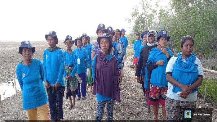 Pemdes Weseben di Malaka Gelorakan Program Menanam Mangrove