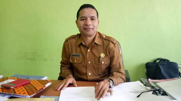 Jumlah Kasus DBD di Kabupaten Ngada Tahun 2021 Hanya 39 Kasus, Simak Penjelasan Kadis Kesehatan