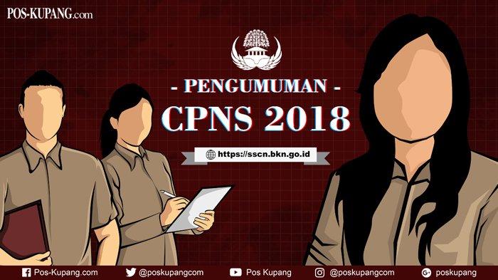 Catat! Tiga Hari Lagi Jadwal Tes SKD CPNS 2018 Seleksi Kompetensi Dasar CPNS di Wilayah NTT Digelar