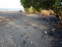 Pengunjung Buang Sampah di Pantai Nangadhero