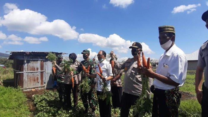 Cegah Pandemi Covid-19 dan Ketahanan Pangan, Polres Manggarai Launching Kampung Tangguh Lawir, Simak