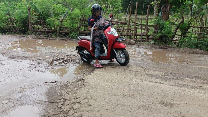 Penumpang Keluhkan Badan Sakit Saat Lewati Ruas Jalan Provinsi di Halilulik-Welaus
