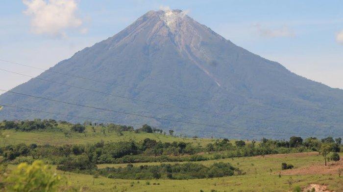 TRIBUNWIKI: Menikmati Pesona Padang Savana Negekeo di Pulau Flores