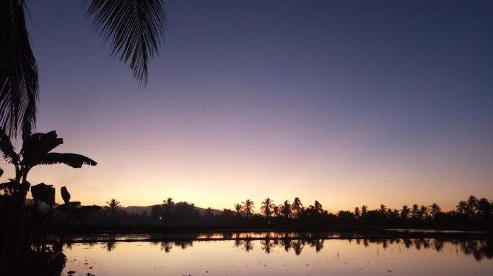 TRIBUN WIKKI : Menikmati Sunset dari Areal Persawahan Mbay