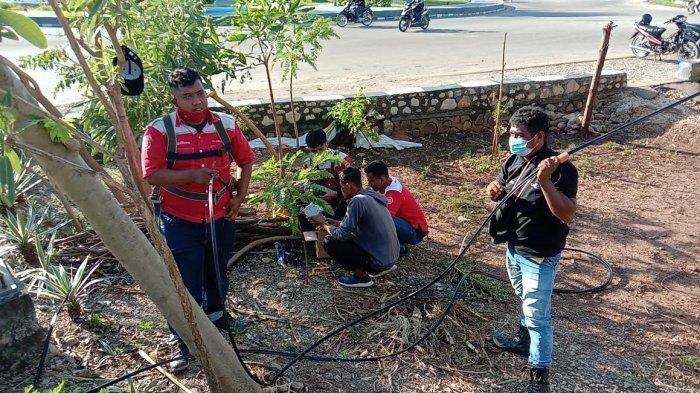 Petugas Telkom Perbaiki Jaringan Yang Lumpuh di Kota Kupang