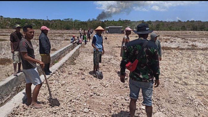 Poktan Manekat Salut atas Perjuangan Ansy Lema di Senayan