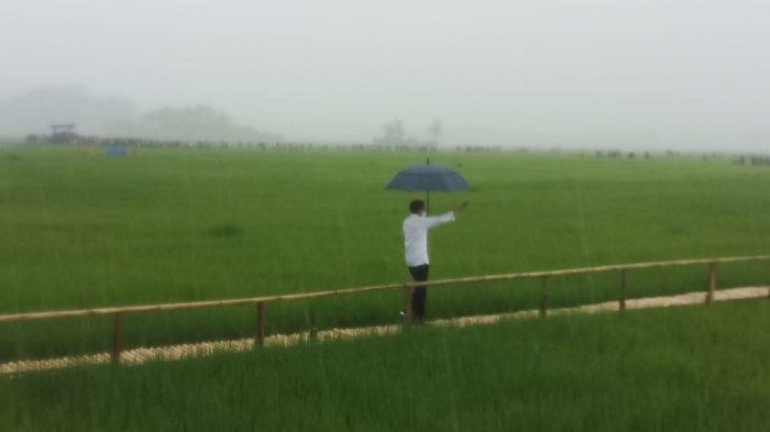 Hujan Lebat Sambut Kedatangan Presiden Joko Widodo di Sumba Tengah - NTT