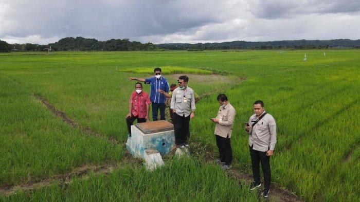 Proyeksi Lumbung Pangan, Pemerintah Pusat Intervensi Pertanian NTT Rp 40 Miliar
