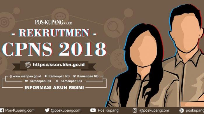 Pendaftar CPNS 2018 di sscn.bkn.go.id Capai 2.802.751 Orang, KemenpanRB Ubah Jadwal